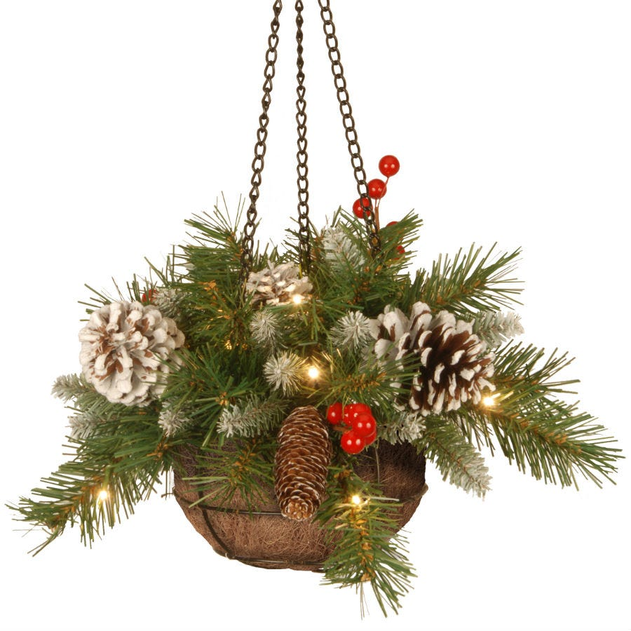 Compare prices for National Tree Company Frosted Berry Hanging Basket