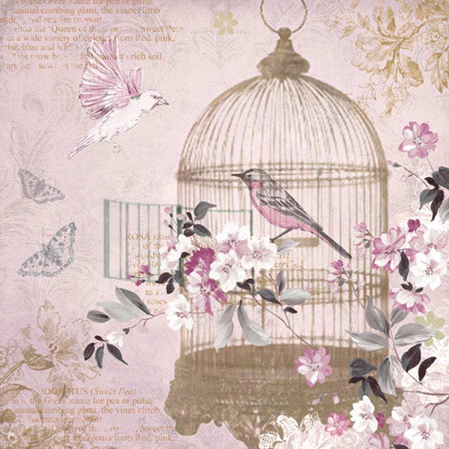 Compare cheap offers & prices of Arthouse Enchanted Birdcage Wall Canvas manufactured by Arthouse