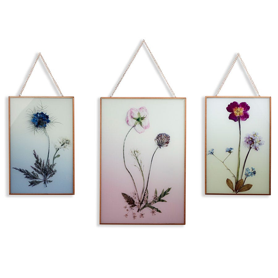 Compare cheap offers & prices of Arthouse Wildflowers Wall Art - Set of 3 manufactured by Arthouse