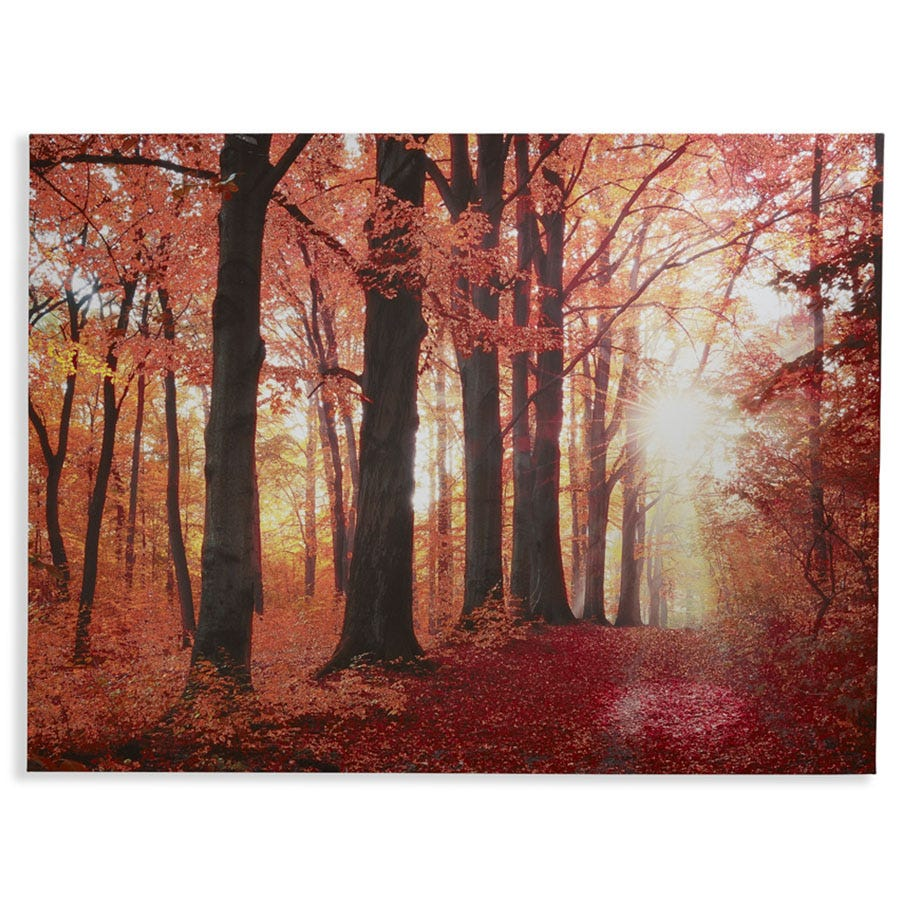 Compare cheap offers & prices of Arthouse Glitter New Forest Wall Canvas manufactured by Arthouse