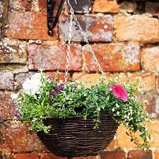 Smart Garden 12-Inch Rattan Hanging Basket
