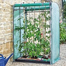 Gro-Zone Tomato Max Growhouse
