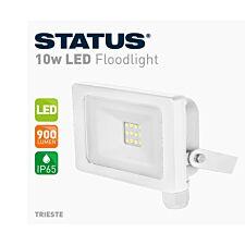 Status 10w White LED Floodlight