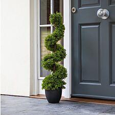 Smart Garden Topiary Twirl