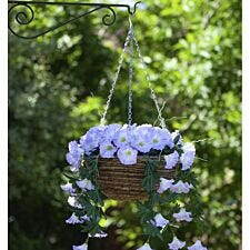 Smart Garden Spring Bloom Hanging Basket