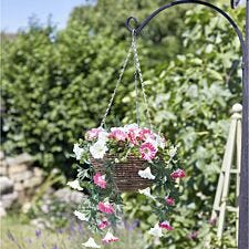 Smart Garden Summer Bloom Hanging Basket