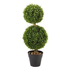 Smart Garden Duo Topiary Tree
