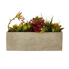 Premier Housewares Mixed Faux Succulents in Cement Pot