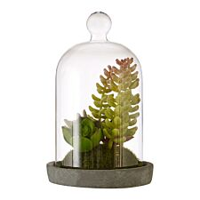 Premier Housewares Small Faux Succulent in Dome with Cement Base