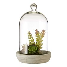 Premier Housewares Large Faux Succulent in Dome with Cement Base