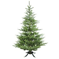 6Ft Noma Nordman Fir Christmas Tree