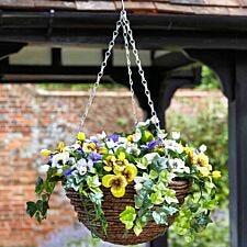 30cm Pansy Hanging Basket