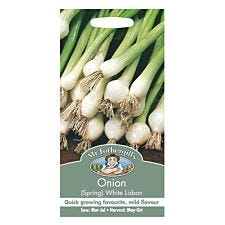 Mr Fothergill's Onion (Spring) White Lisbon Seeds