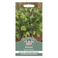 Mr Fothergill's Mixed Lettuce Green Leaves Seeds