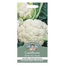 Mr Fothergill's Cauliflower All The Year Round Seeds
