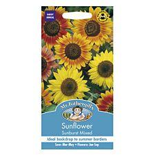 Mr Fothergill's Sunflower Sunburst Mixed Seeds
