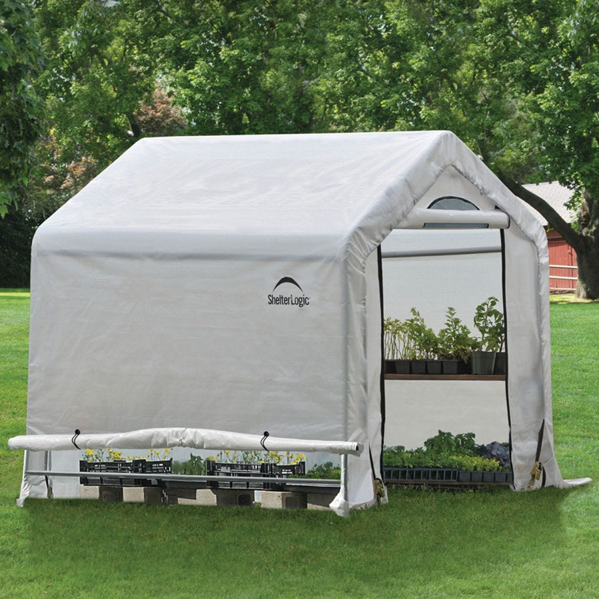 ShelterLogic 6ft x 6ft Greenhouse in a Box