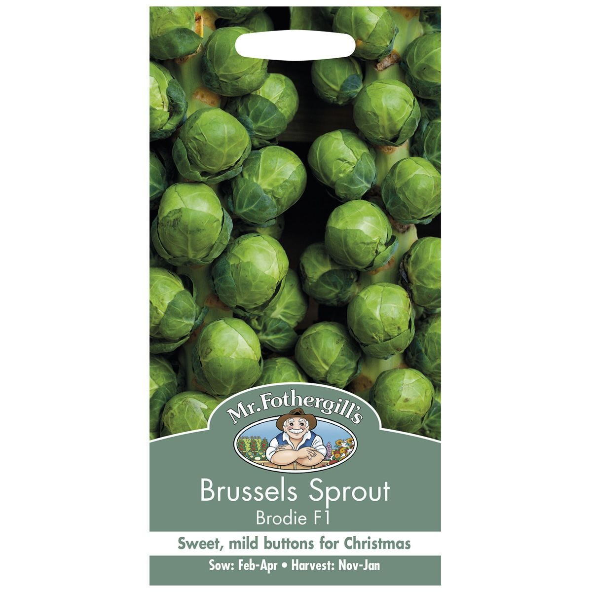 Mr Fothergill's Brussels Sprout Brodie F1 Seeds