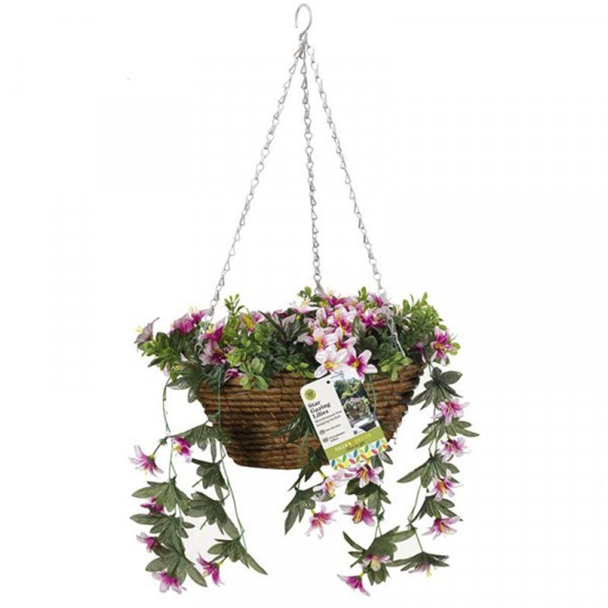 Smart Garden Star Gazing Lilles Hanging Basket