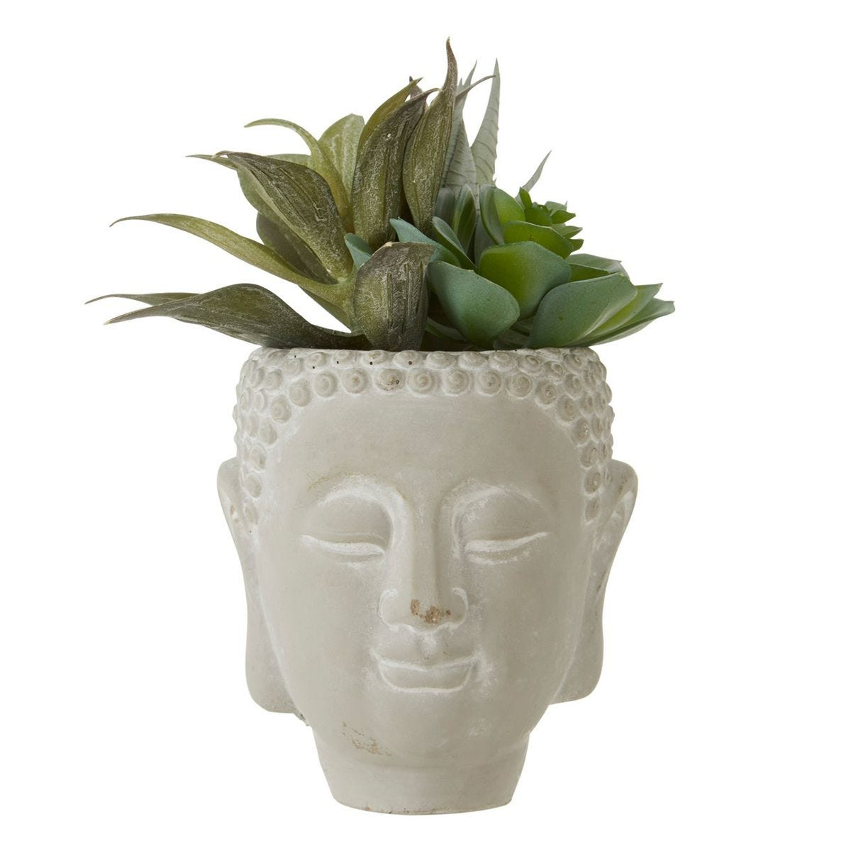 Mixed Succulent Buddha Pot - White Wash Cement