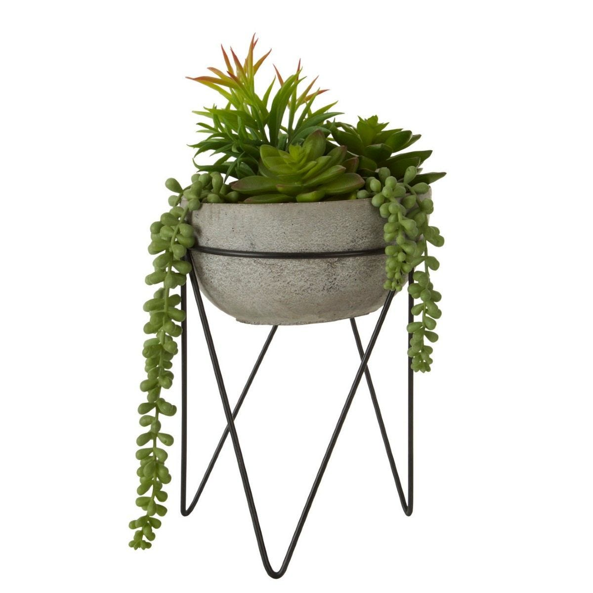 Mixed Succulent Grey Cement Pot with a Metal Stand