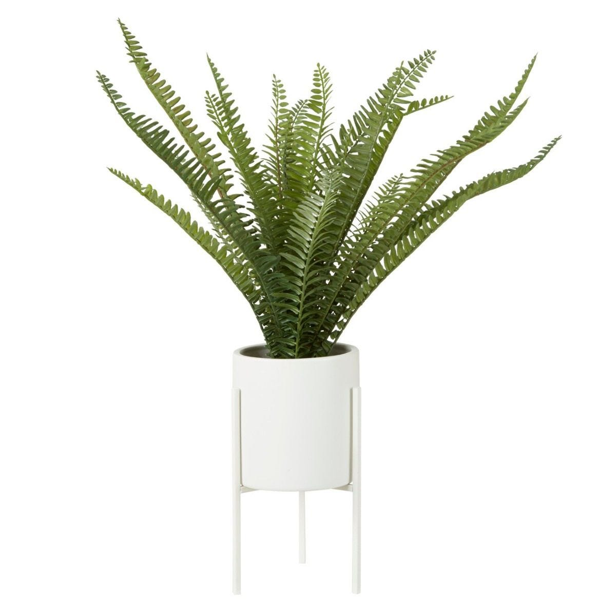 Fern White Cement Pot with a Iron Stand