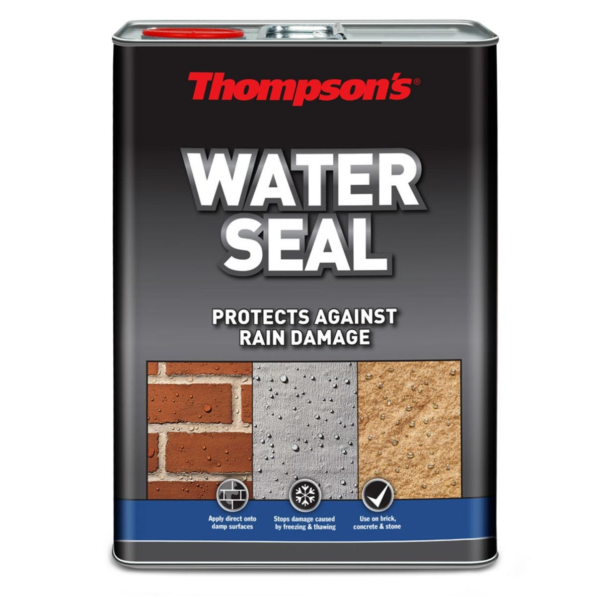Thompson's Clear Water Seal - 1L