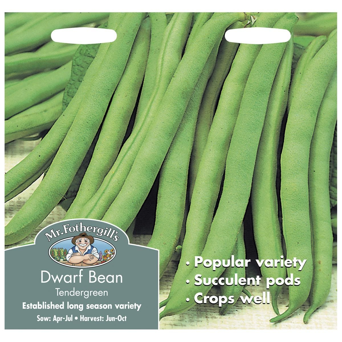 Mr Fothergill's Dwarf Bean Tendergreen Seeds