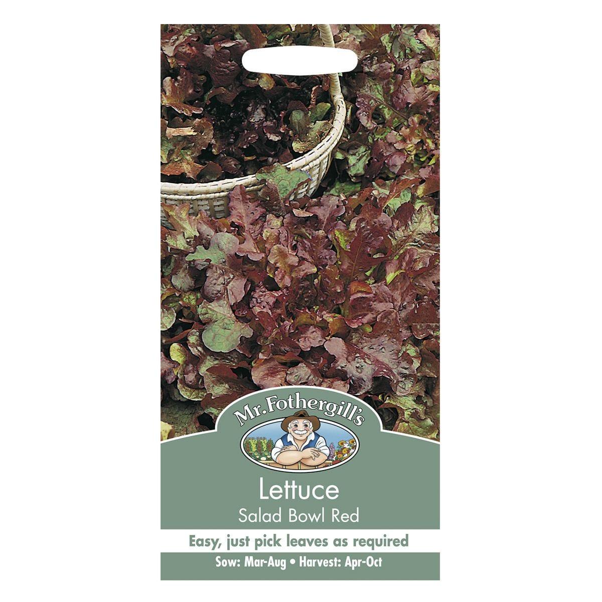 Mr Fothergill's Lettuce Salad Bowl Red Seeds