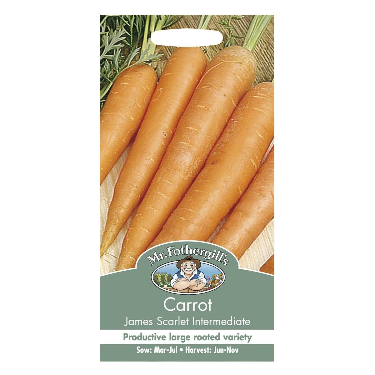 Mr Fothergill's Carrot James Scarlet International Seeds