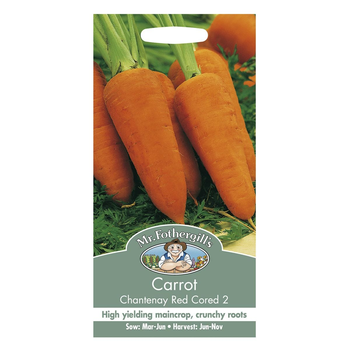 Mr Fothergill's Carrot Chantenay Red Cored 2 Seeds