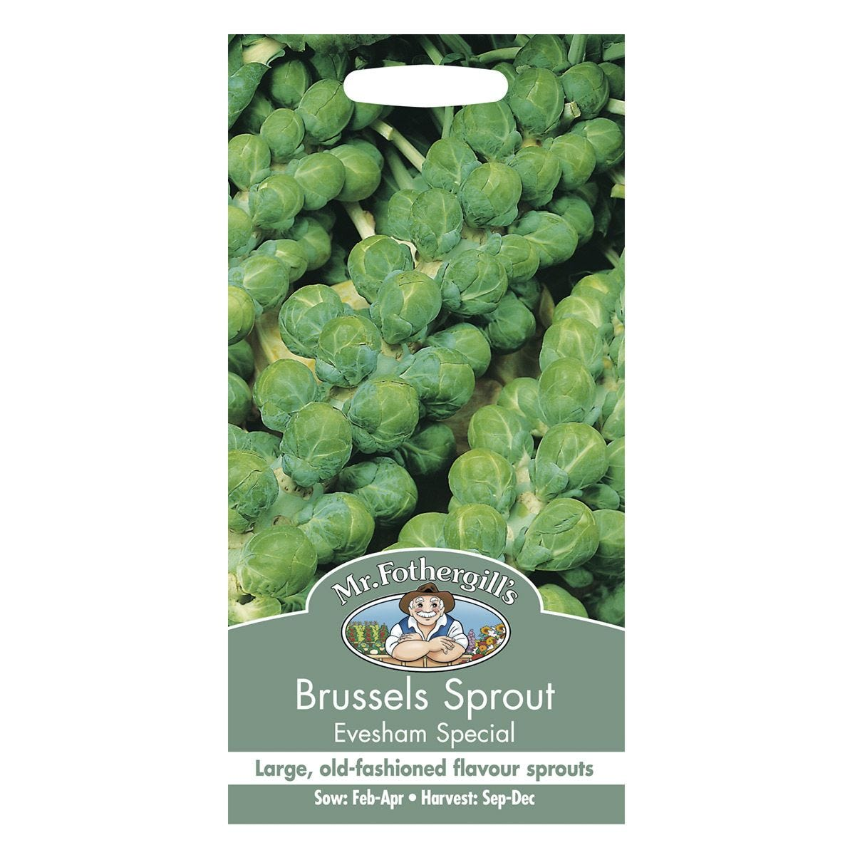 Mr Fothergill's Brussels Sprout Evesham Special Seeds