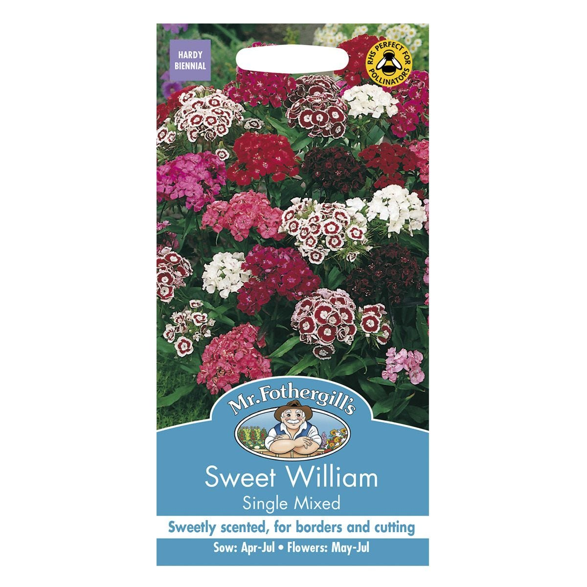 Mr Fothergill's Sweet William Single Mixed Seeds