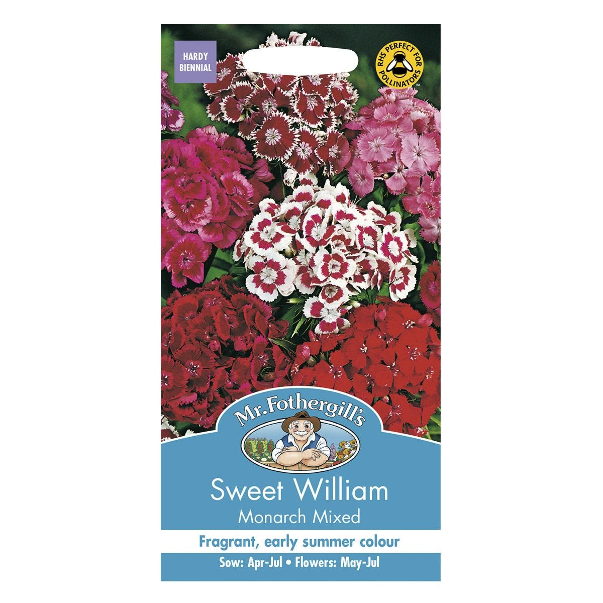 Mr Fothergill's Sweet William Monarch Mixed Seeds