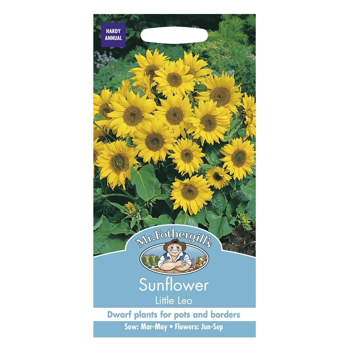 Mr Fothergill's Sunflower Little Leo Seeds