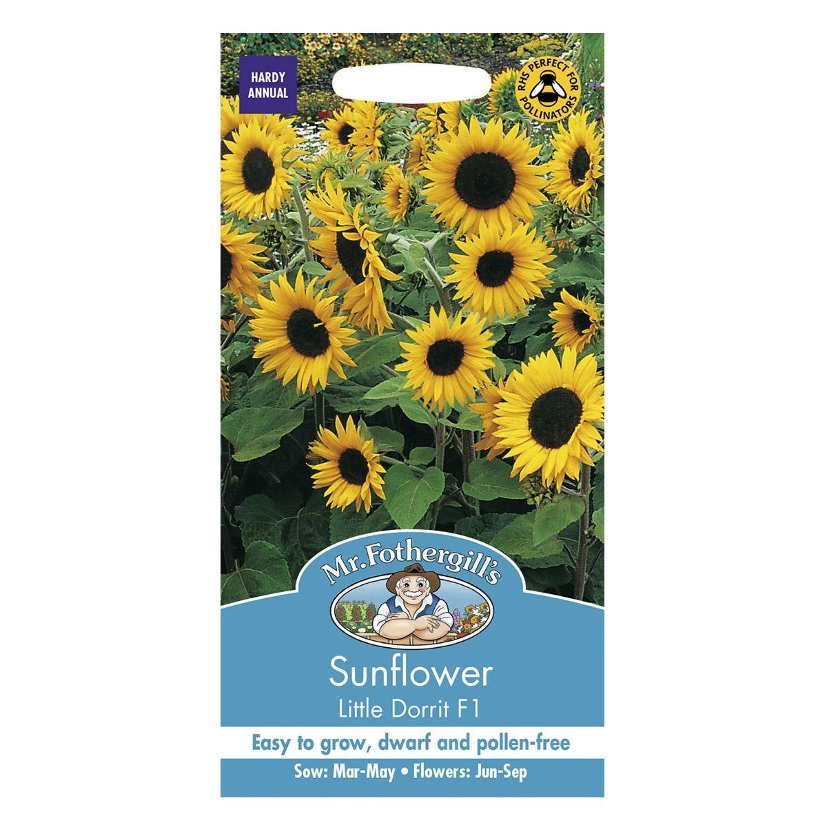 Mr Fothergill's Sunflower Little Dorrit Seeds