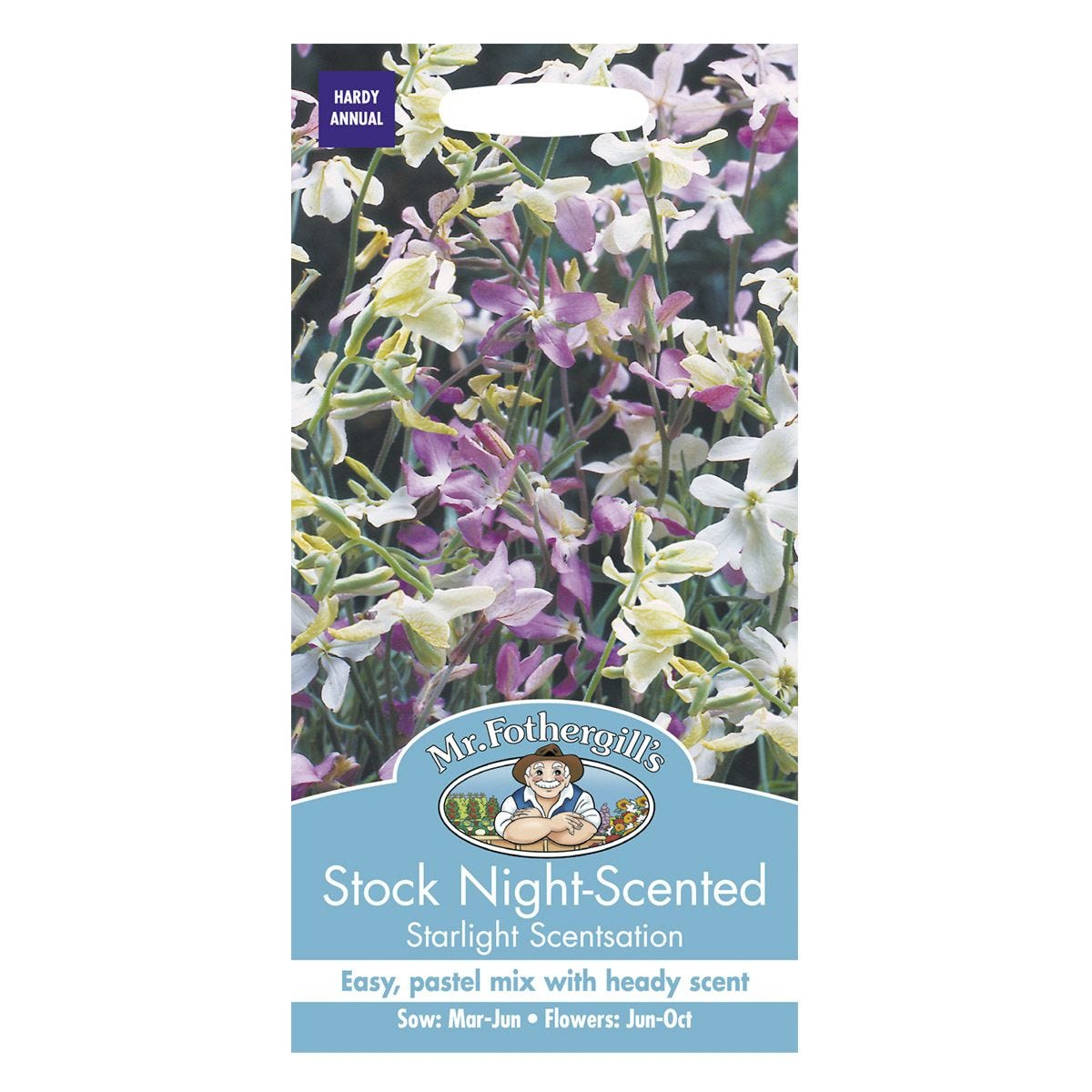 Mr Fothergill's Stock Night Scented Starlight Scentsation Seeds