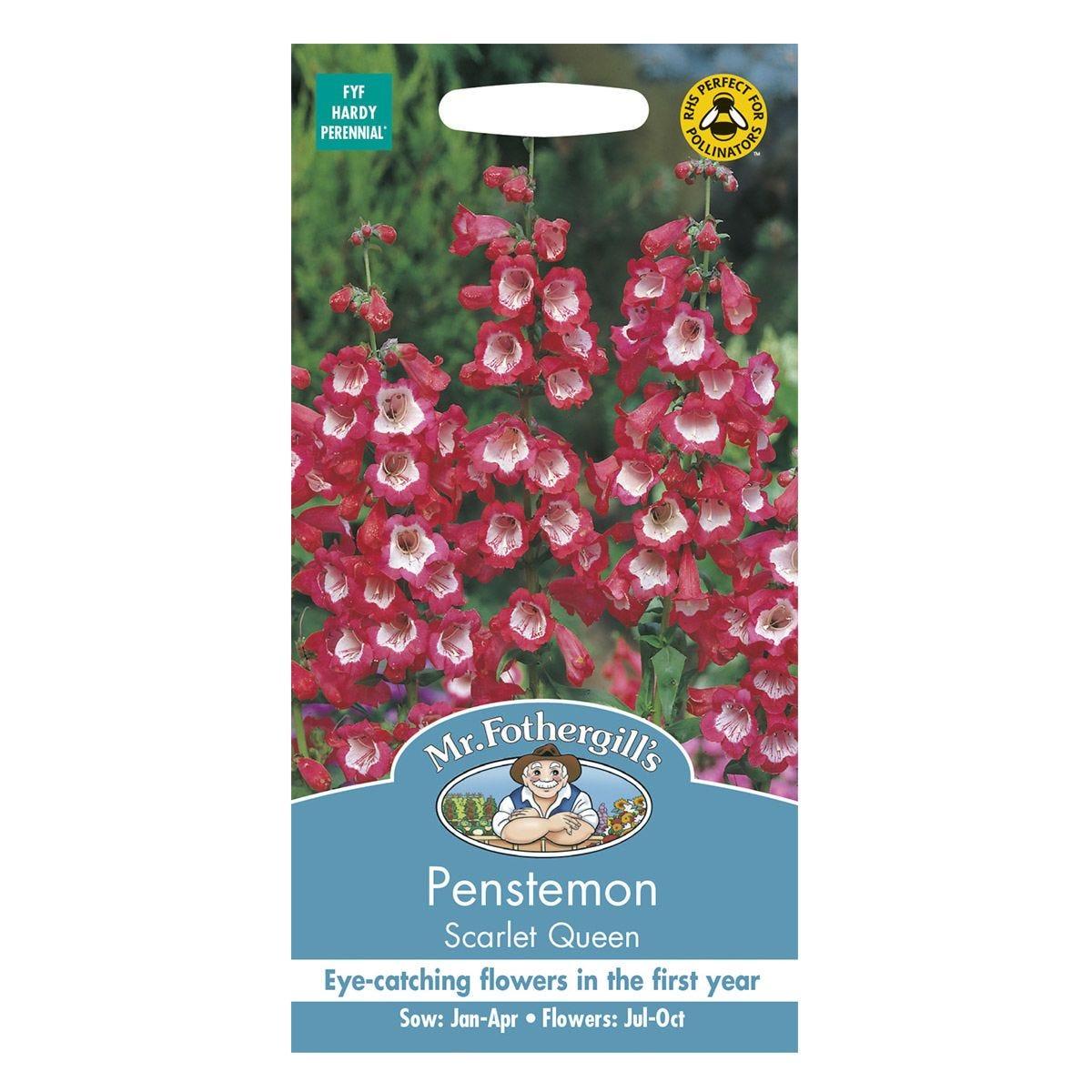 Mr Fothergill's Penstemon Scarlet Queen Seeds