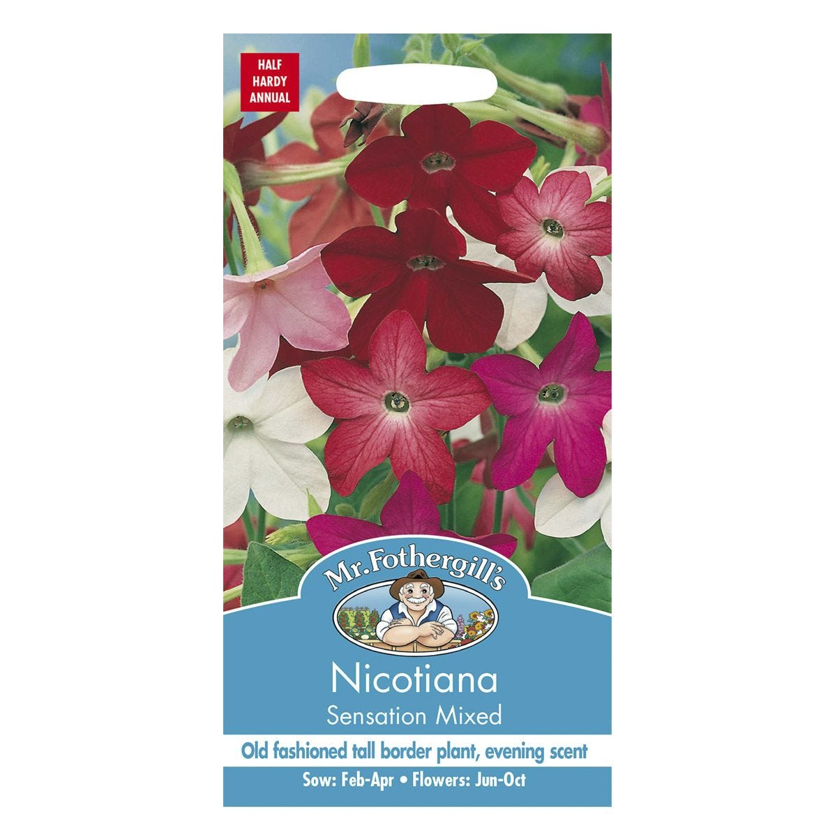 Mr Fothergill's Nicotiana Sensation Mixed Seeds