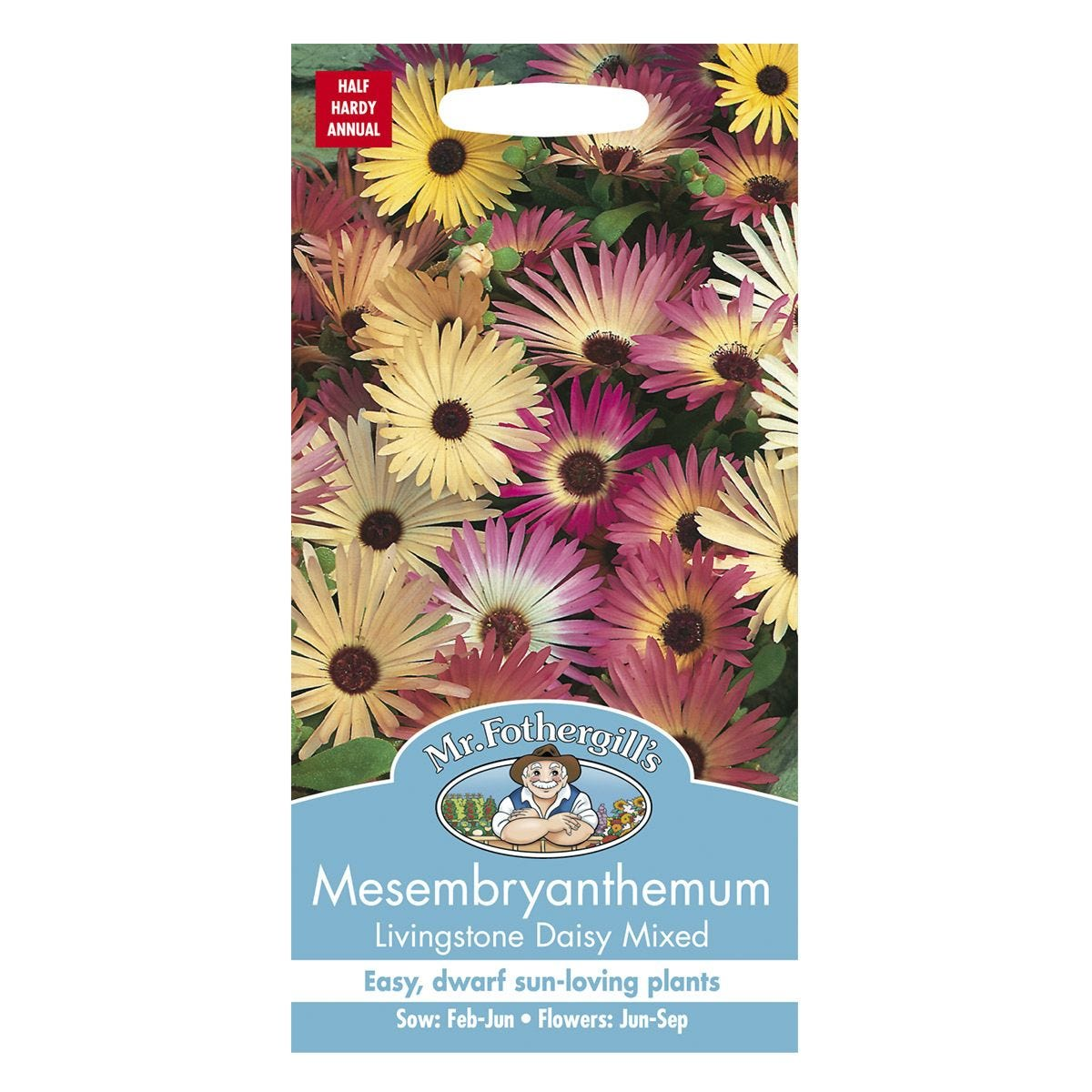 Mr Fothergill's Mesembryanthemum Livingstone Daisy Mixed Seeds