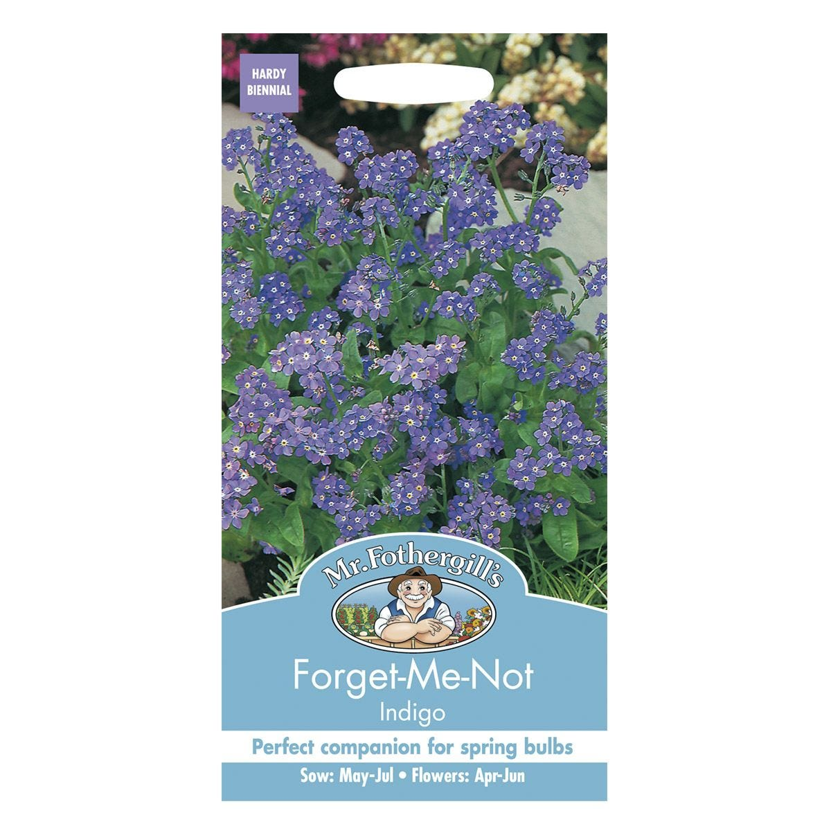 Mr Fothergill's Forget Me Not Indigo Seeds