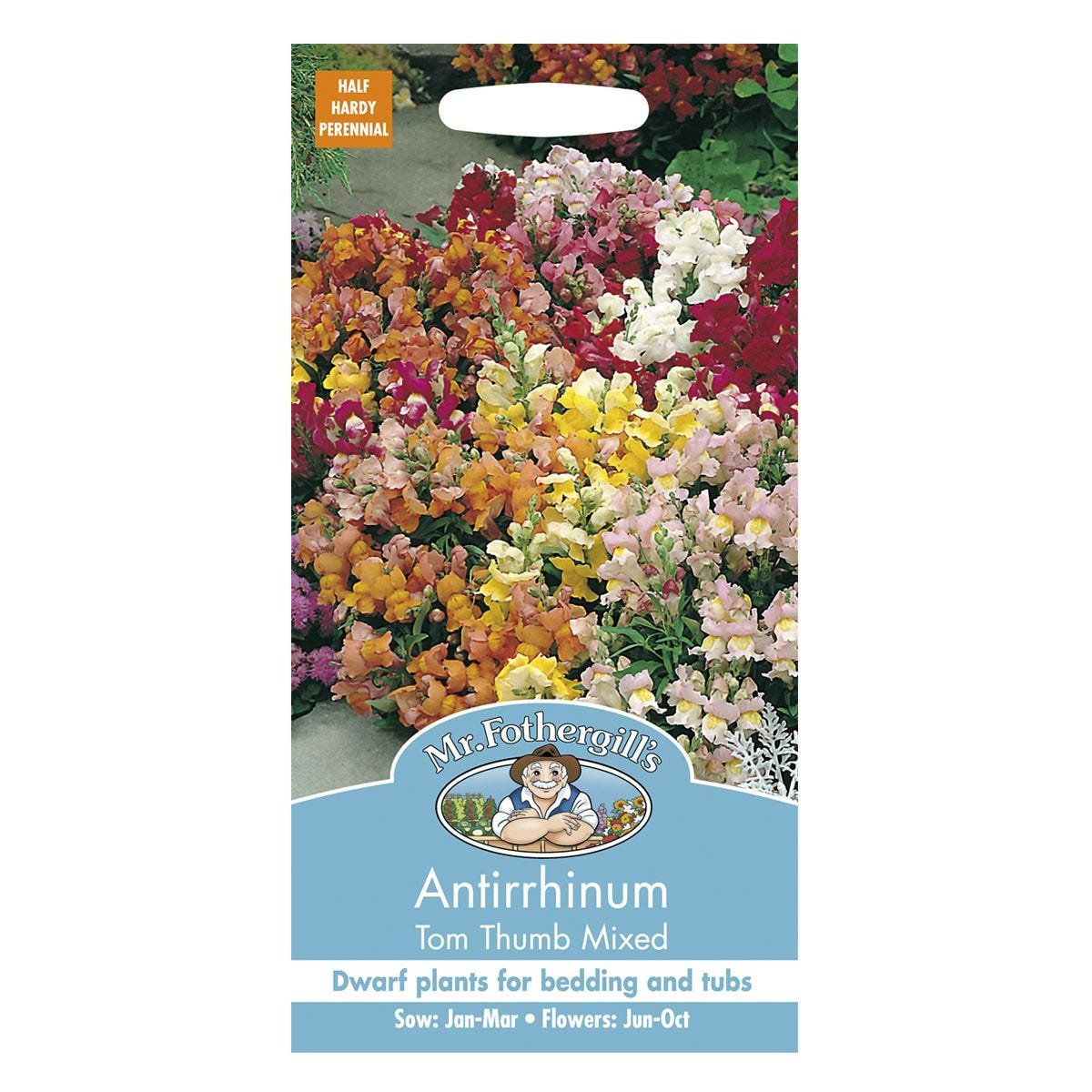Mr Fothergill's Antirrhinum Tom Thumb Mixed Seeds