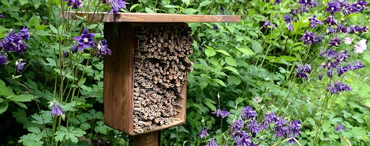 bee hotel attract bees insects to garden