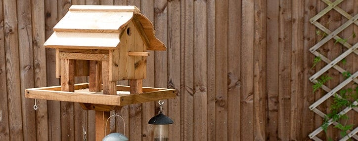 bird table attract birds to garden
