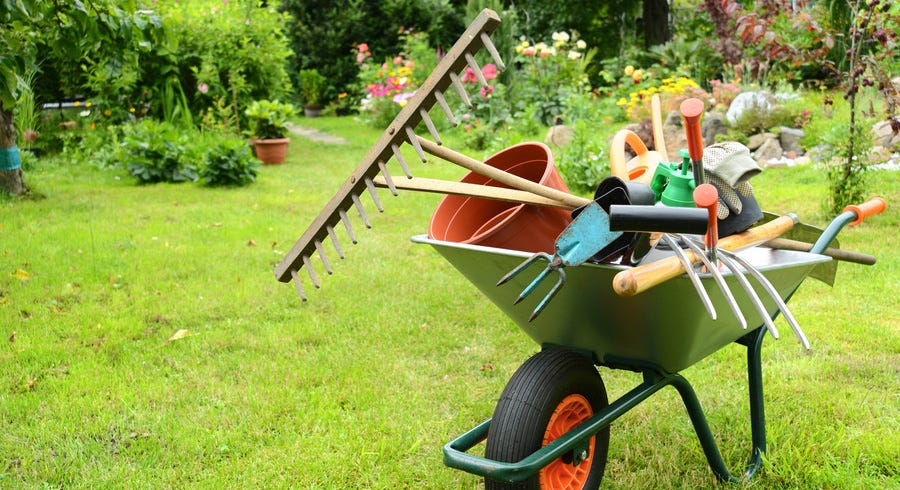 7 Essential Gardening Tools for Beginners