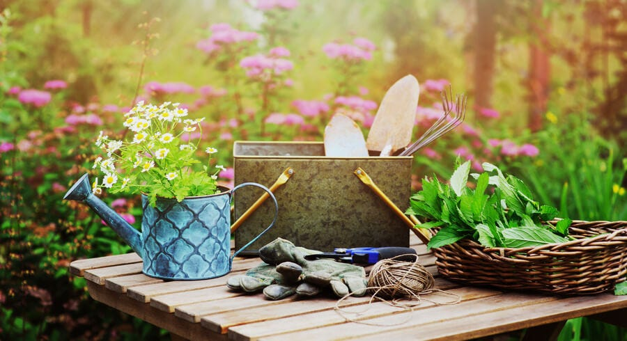 7 Top Gardening Tips for July