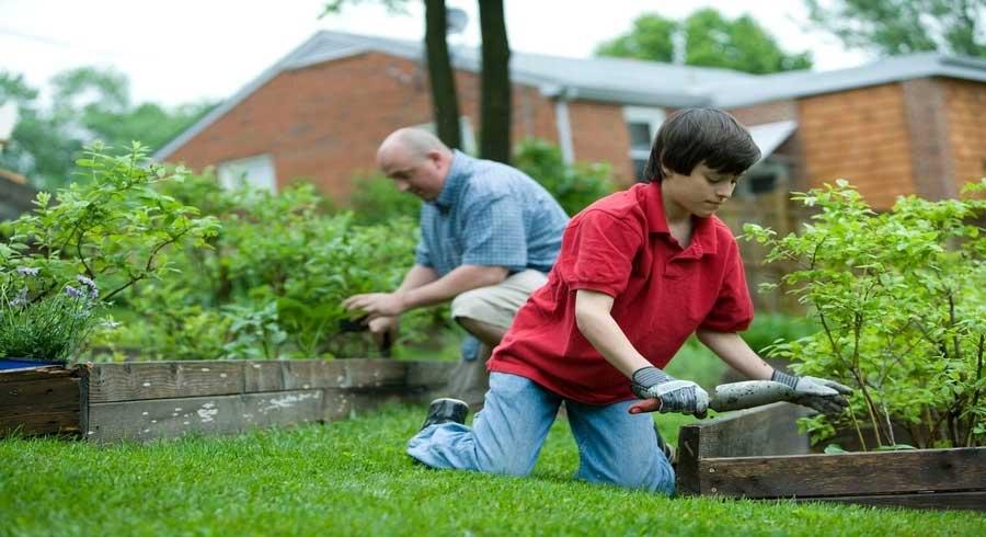 4 Garden Tidying Tips