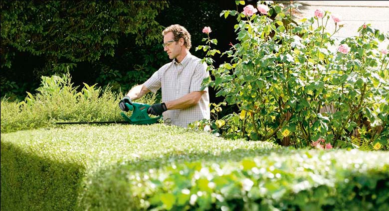Finding the Best Hedge Trimmer: A Buying Guide