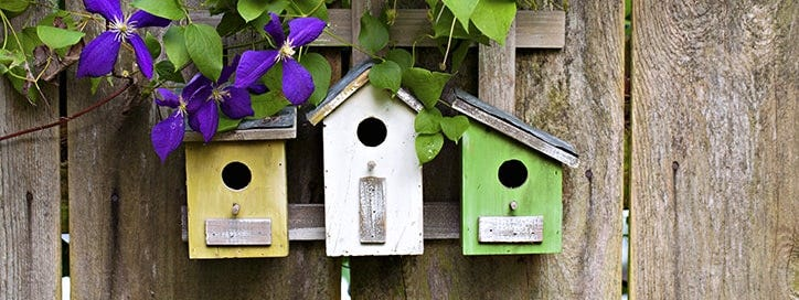 16 Top Tips for Attracting Wildlife to Your Garden