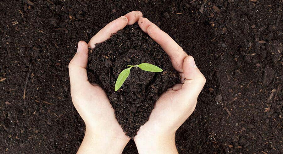 The Ultimate Guide to Different Types of Compost & Chemicals